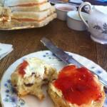 Pettigrew Tea Rooms scones